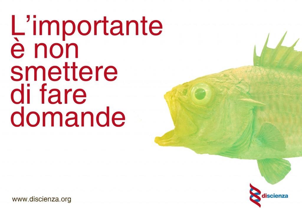flyer di promozione